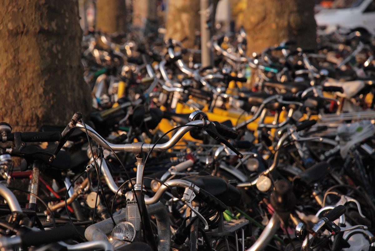 Parcheggio di biciclette, Gante, Olanda 2008